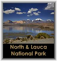 North & Lauca National Park